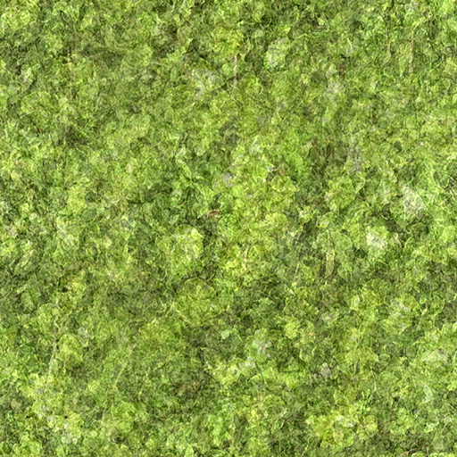Terrain Textures 01a Vegetation And Humus Tiled 512px