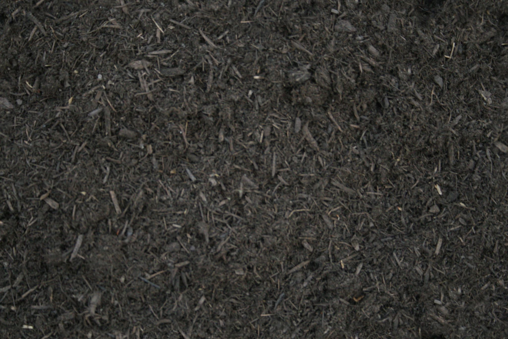dirt texture seamless. DirtAndBark_S.jpg Dirt Texture Seamless