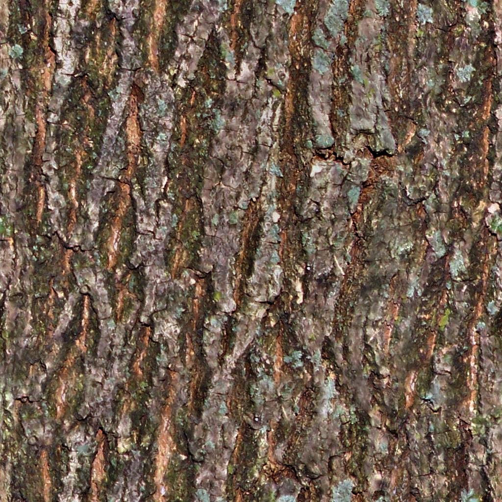 seamless tiling tree bark texture opengameartorg