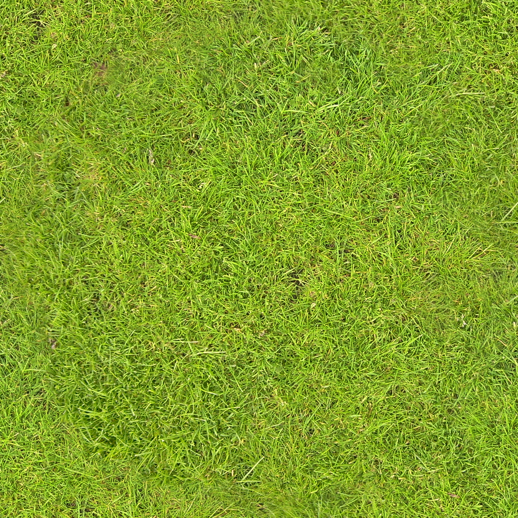 Grass.png 3.2 mb 2092