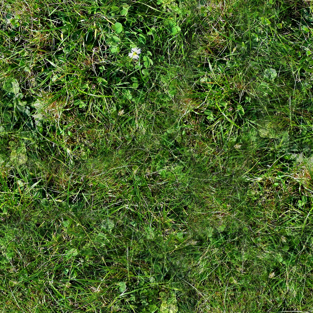 Forest Ground Textures - grass 7.png | OpenGameArt.org
