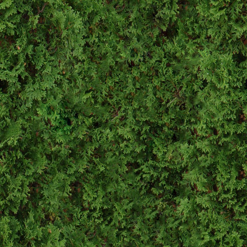 3 Tiling Shrub Textures - shrub2.png | OpenGameArt.org