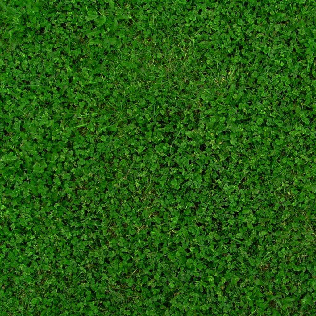 30 Grass Textures Tilable Tileable Grass Clover