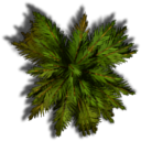 Top down foliage collection | OpenGameArt.org