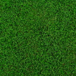 Preview Grass