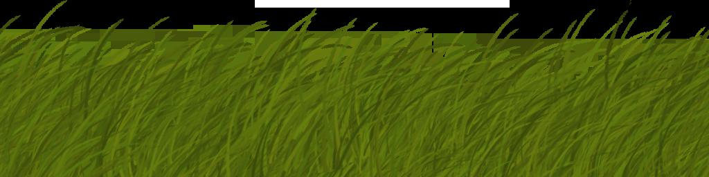 grass texture alpha